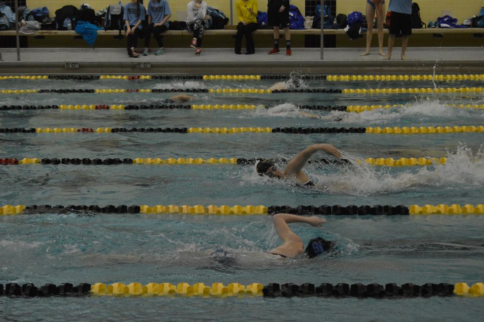 Photo of Penn Girls Swimmers competing in Sectional