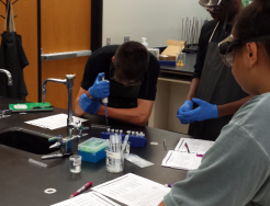 Penn Students doing lab work in the Medical Interventions Class.